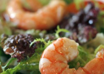 Shrimp and Mozzarella Salad