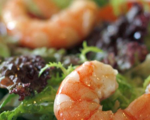 Shrimp and Mozzarella Salad